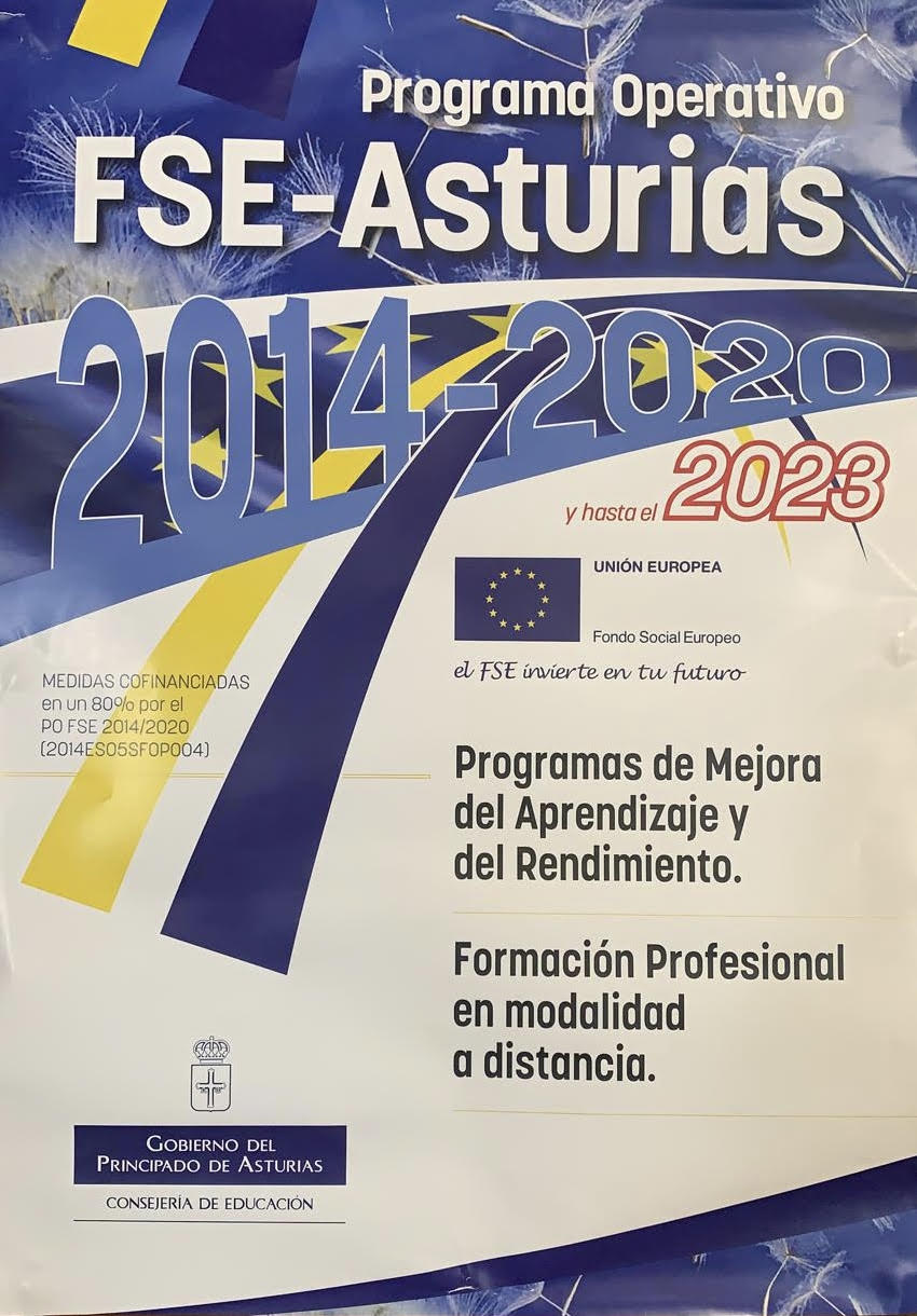 FSE-Asturias. 2021